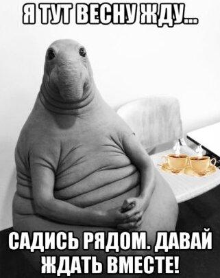 Новые приколы в картинках ЖДУН ждет ЖДУНА 2017 #17 фото